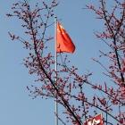 花开旗舞新春到