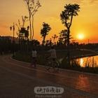 夕阳下的陆港绿道