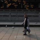 冬日昭觉寺