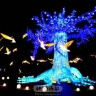 金沙太阳节灯会(3)