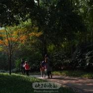 金水河步道