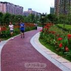 绿道花路健身跑