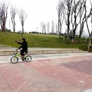 绿道骑车游