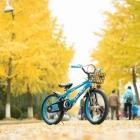 一叶秋天碧