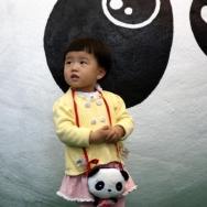 我爱大熊猫