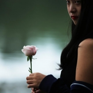 你是我的玫瑰...