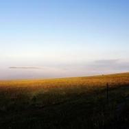 草原的早晨